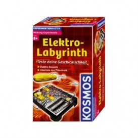 Home Experiments - Electric Labyrinth